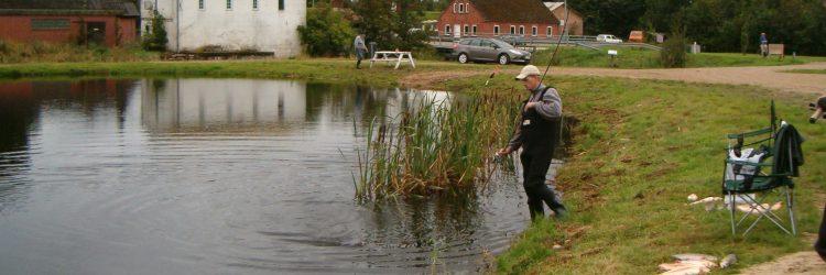 Fiskesø 007 - Kopi